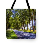 Natural Tunnel Tote Bag