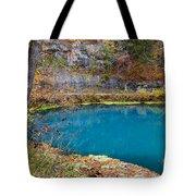 Naturally Blue Tote Bag