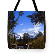 Naturally Framed Tote Bag by Chris Brannen