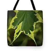 Naturally Framed Tote Bag