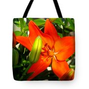 Naturally Intense Tote Bag