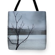 Nature -  The Naked Tree Tote Bag