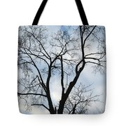 Nature - Tree In Toronto Tote Bag
