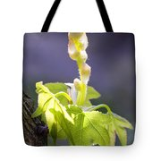 Nature 18 Tote Bag