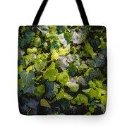 Nature Abstract 5 Tote Bag