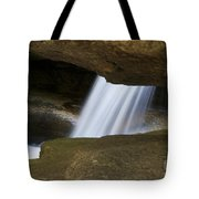 Nature Abstract Art Tote Bag