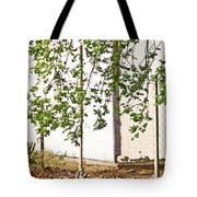 Nature As Abstract Tote Bag