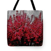 Nature As Art Tote Bag