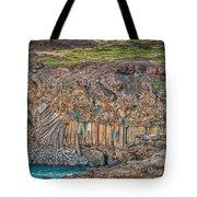Nature Carvings Tote Bag
