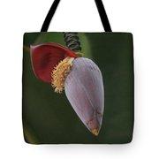 Nature Ear Tote Bag