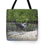 Nature In Florida Tote Bag