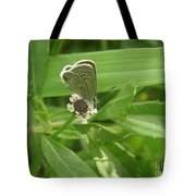 Nature In The Wild - A Floral Perch Tote Bag
