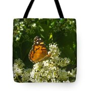 Nature In The Wild - A Light In The Darkness Tote Bag