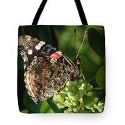 Nature In The Wild - A Rest For The Weary Tote Bag