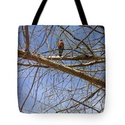 Nature In The Wild - Annoucing Spring Tote Bag