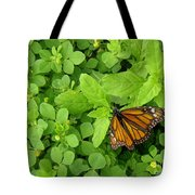 Nature In The Wild - Beautiful Solitude Tote Bag