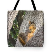 Nature In The Wild - Keeping Watch Tote Bag