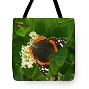 Nature In The Wild - Landing Perfectly Tote Bag