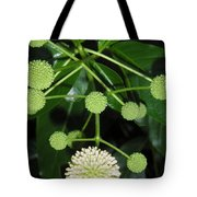Nature In The Wild - Natural Pom Poms Tote Bag