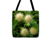 Nature In The Wild - Pin Cushions Of Nature Tote Bag