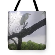 Nature In The Wild - Scanning The Horizon Tote Bag