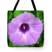 Nature In The Wild - Glory In Purple Tote Bag