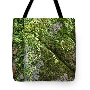 Nature - Living Retention Wall 1 Tote Bag