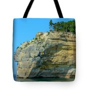 Nature Made- Indian Head Pictured Rocks Tote Bag