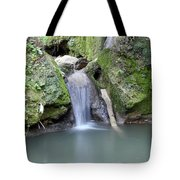 Nature Spring Scene Creek Tote Bag