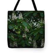 nature Ukraine blooming chestnuts Tote Bag
