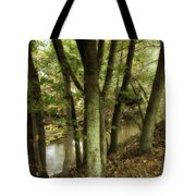 Nature Walk Along The Stream Tote Bag