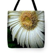 Nature When Wet Tote Bag