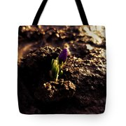 Nature Wins Every Time Tote Bag