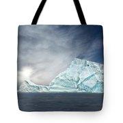 Nature's Art Work Tote Bag
