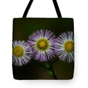 Nature's Asterisks Tote Bag