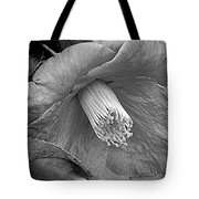 Nature's Beauty In Black And White Tote Bag