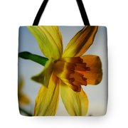 Natures Beauty Tote Bag