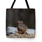 Natures Birds 49 Tote Bag