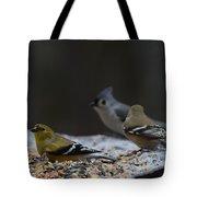 Natures Birds 59 Tote Bag
