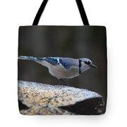 Natures Birds 66 Tote Bag