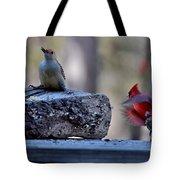 Natures Birds 68 Tote Bag