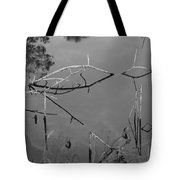 Natures Bridge Tote Bag