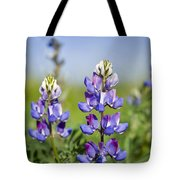 Natures Candy Tote Bag