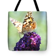 Nature's Candy Shop Tote Bag