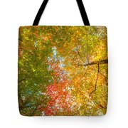 Natures Canopy Of Color Tote Bag