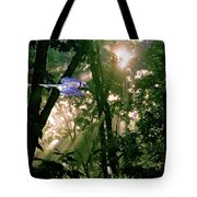 Nature's Cathedral Tote Bag