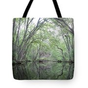 Nature's Chapel Tote Bag