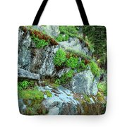 Nature's Collage Tote Bag