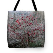 Nature's Decorations Tote Bag