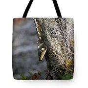 Nature's Detail Tote Bag